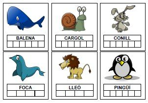 Learning Catalan