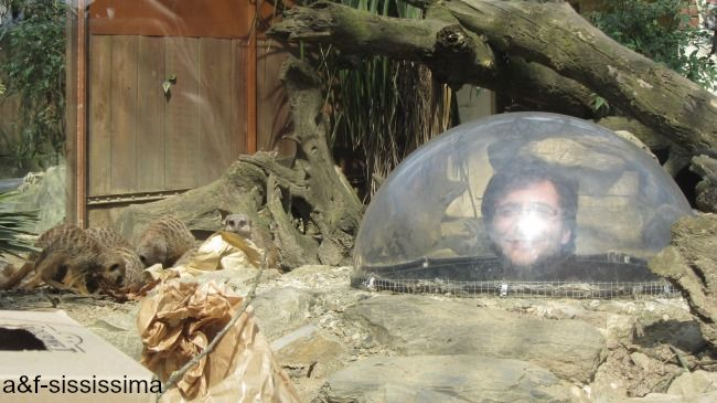 acqua e farina-sississima: Pistoia (seconda parte)