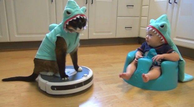 Cette maman avait visiblement de l'imagination ce jour là. Matériel nécessaire : deux costumes de requin, un aspirateur robot Roomba d'iRobot et en bonus un chat et un bébé. Agitez le tout et vous obtenez ceci :