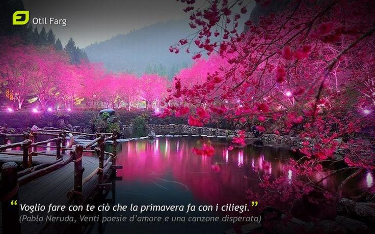 Voglio fare con te ciò che la primavera fa con i ciliegi. (Pablo Neruda)