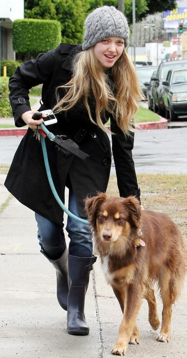 Amanda Seyfried Dog Grooming Hair
