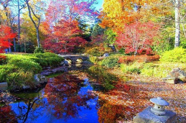 Comienza el otoño en Finlandia, la explosión de sus colores lo delatan, un destino ideal para admirar paisajes otoñales.