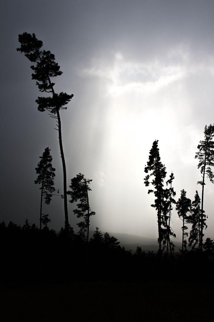 Rays of light by Tătar Dennis Marian on 500px