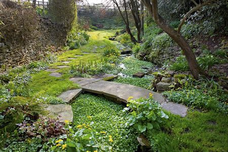 66 Best Images About Woodland Gardens On Pinterest Pond 400 x 300