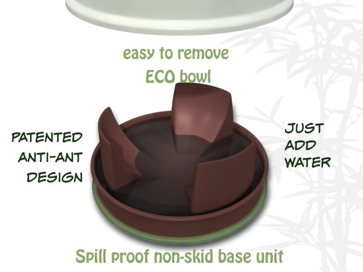 The base is filled with water so ants cannot reach the pet food. The increased height also means that the animals eating posture is better.