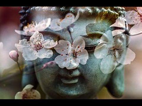 Musica di Meditazione Notturna, Suoni della Notte, Natura e Onde Alfa