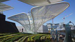 Germany Pavilion at Expo Milano 2015, Milano, 2015 - SCHMIDHUBER