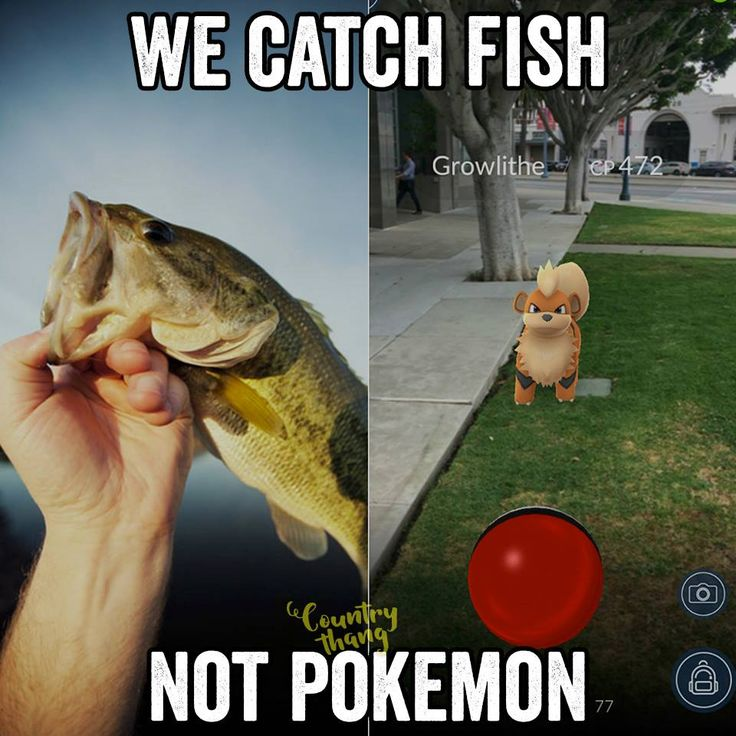 We catch fish not pokemon ******why can't I catch both...  gotta catch em all!!!