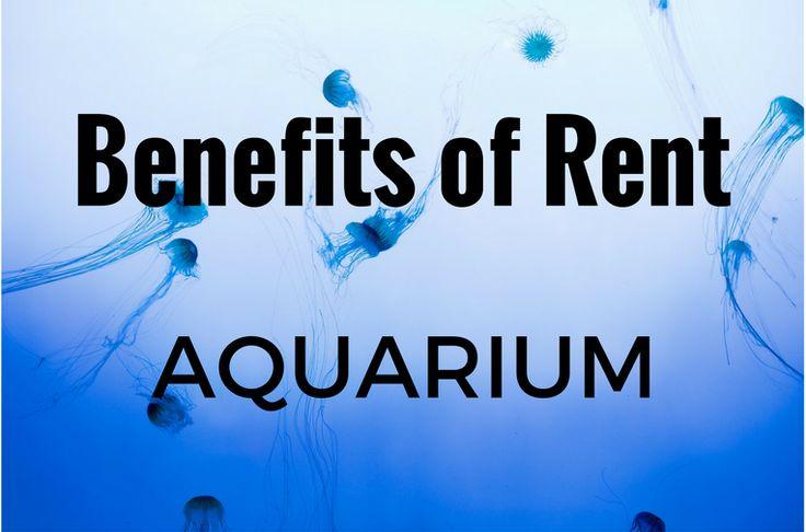 Benefits of Rent Aquarium https://shar.es/1xQYhM