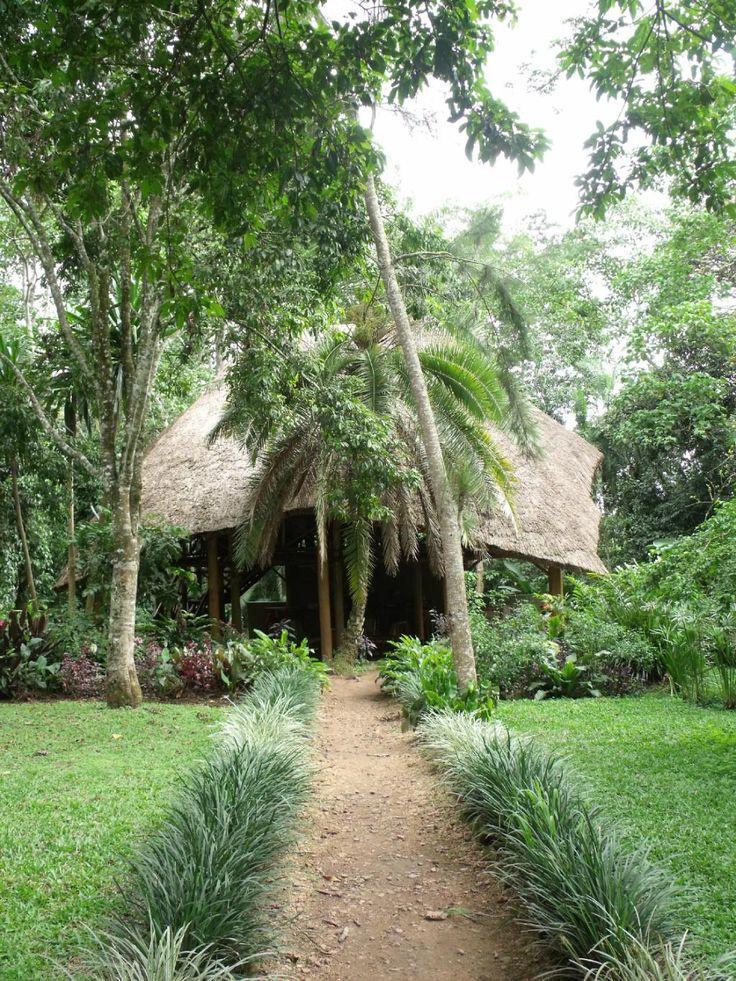 Kibale Forest Camp (Kibale National Park, Oeganda) - Lodge Beoordelingen - TripAdvisor NACHT 8
