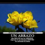 Imágenes De Rosas Amarillas Con Frases Bonitas