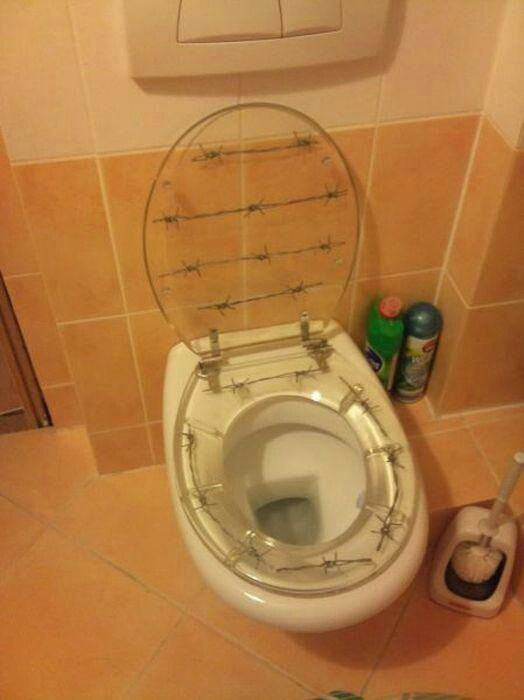 Barbed Wire Encased In A Clear Toilet Seat Awesome Stuff