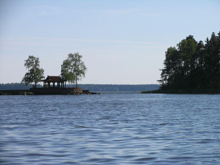 вид на Финский залив из парка Монрепо