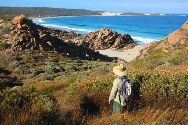 Thrilling Treks In Australia.Hike Along Great Ocean Road,trek Through Gondwana Rainforest An Cradle Mountain-Lake St. Clair National Park Australia.