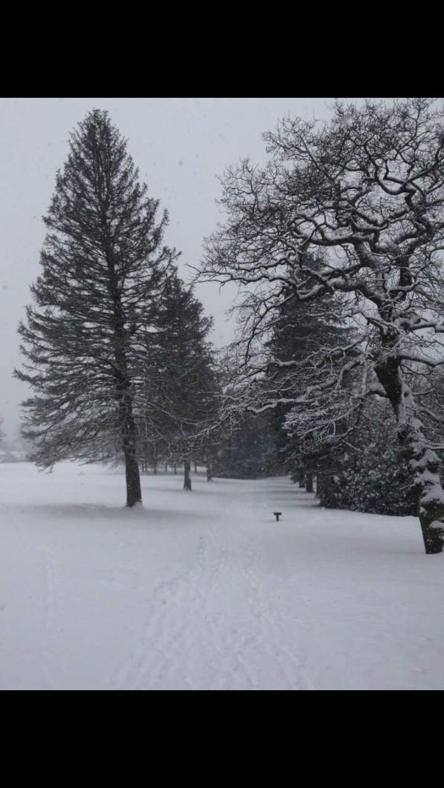 Kings norton park in the snow 2013