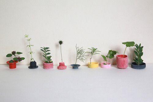/: Plants Can, Design Interiors, Interiors Design, Sabine Timm, Graphics Design, Gardens, Fashion Photography, Small Plants, Flower