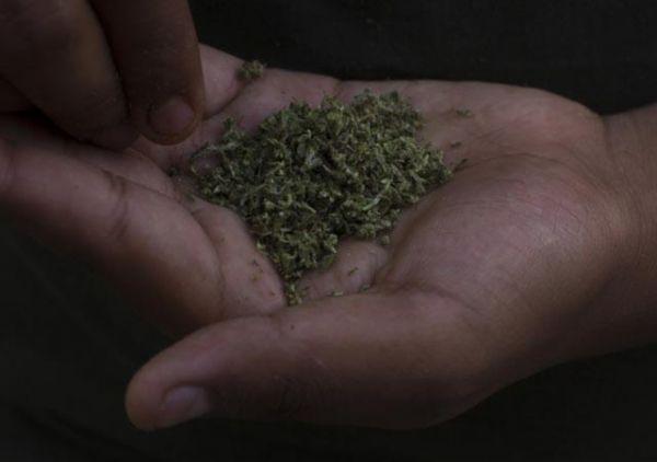 Estudiantes de Ingeniería Biomédica inventan dispositivo para detectar uso de marihuana