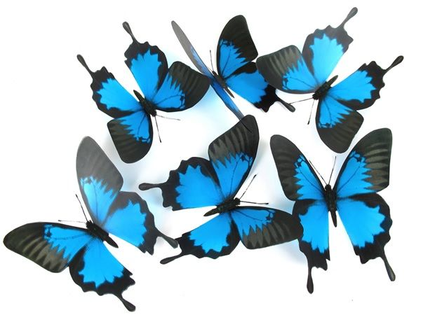 Beautiful Butterfly cut outs ideal for making suncatchers, instore displays and scrapbooking