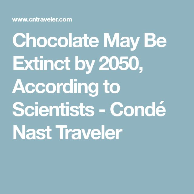 Chocolate May Be Extinct by 2050, According to Scientists - Condé Nast Traveler