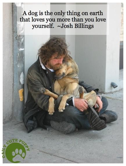 Love your dog more than yourself