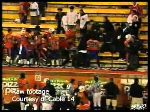 Players From Canadian Junior League Team Fight Fans In Stands ...