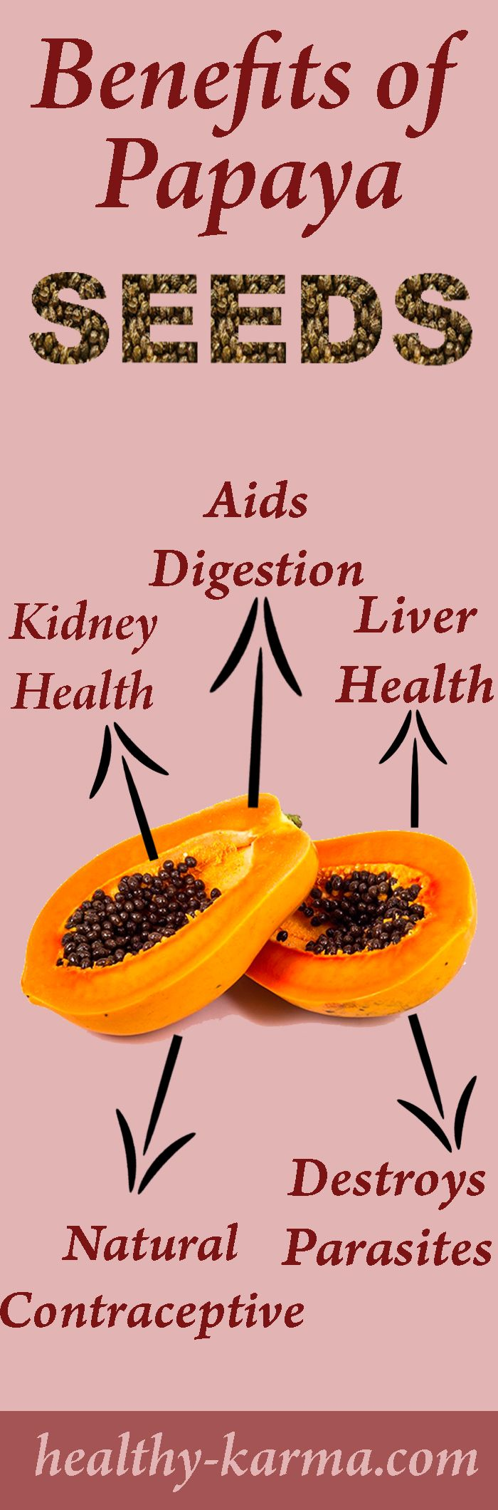 Most of the time when we eat Papaya fruit, we trash the Papaya Seeds. But little do we know how beneficial they are and how they can prevent and cure a plethora of ailments related to the liver, gut, intestinal worms and even diseases like Dengue.