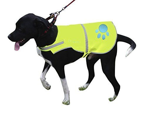 Reflective Dog Vest Large with Adjustable Strap and Florescent Reflectors. Safety Vest for Dogs and Dog Raincoat for Walks in Rain or Snow - Reflects Car Lights for Safety. Also Used As Hunting Vest for Dogs. Lightweight and Comfortable. *** Visit the image link more details.