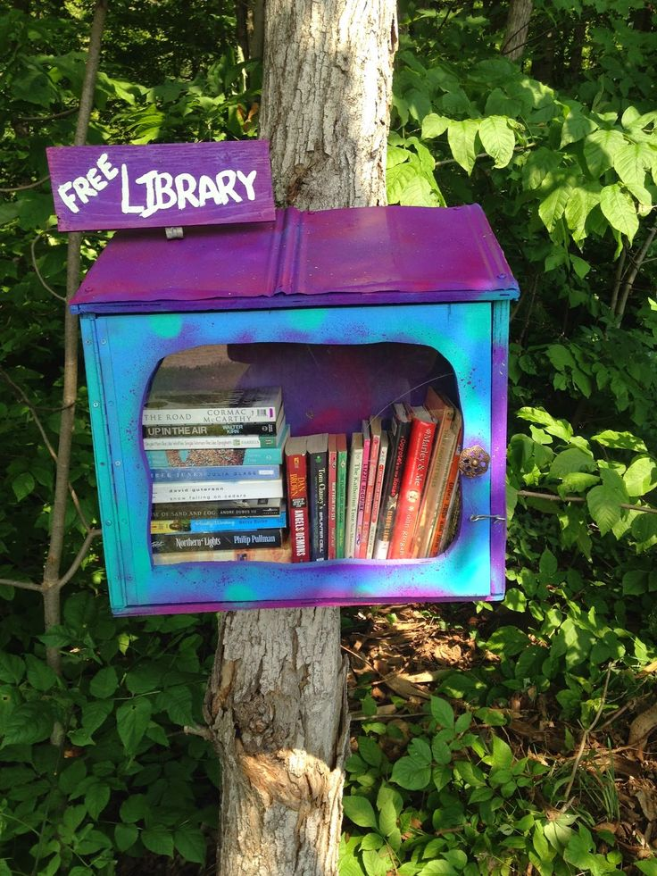 A Little Library on Manitoulin Island