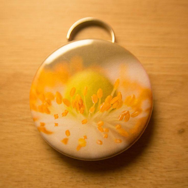 Anemone Bottle Opener