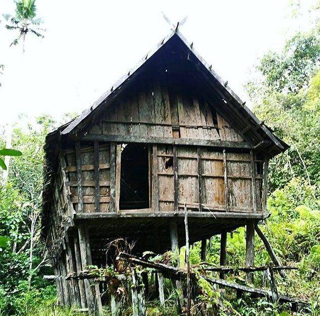 Hulu Jejabo, Kabupaten Lamandau. Haru dan sedih menyeruak melihat rumah Betang ini ditinggalkan dan mulai melapuk. Berdiri di tengah belantara Kalimantan, di depan Betang ini mengalir sungai Muhur yang sejuk dan bening. Hanya berjalan sekitar 1Read More...