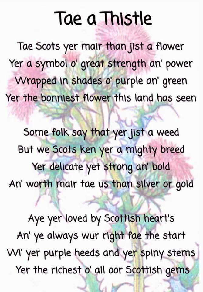 """Tae a Thistle."" Too bad about the erroneous apostrophe in 'hearts'! >.<"