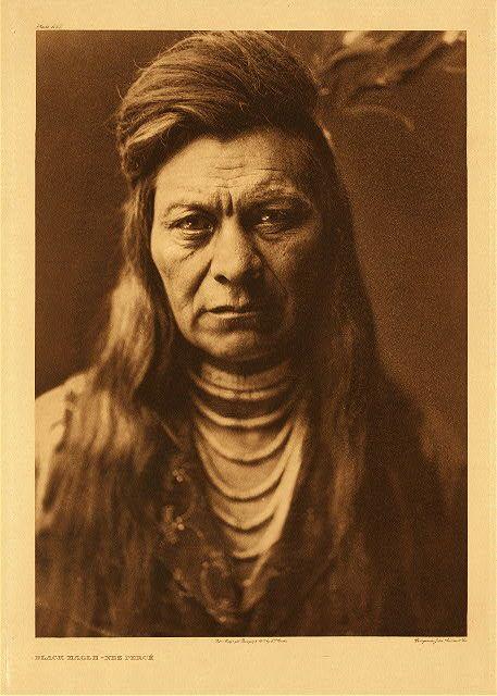 Black Eagle - Nez Perce,1905. Edward Sheriff Curtis Photography.