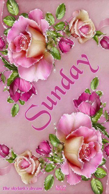 Sunday good morning sunday sunday quotes good morning sunday sunday gifs sunday images sunday pictures sunday quotes and sayings