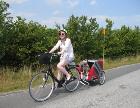 How about having your buddy join you on a lovely weekend bike ride? http://bit.ly/wf3qJQ