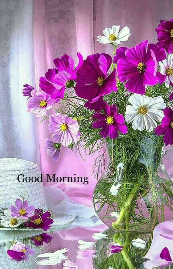 Good Morning With Beautiful Purple Flowers Quotes Pinterest
