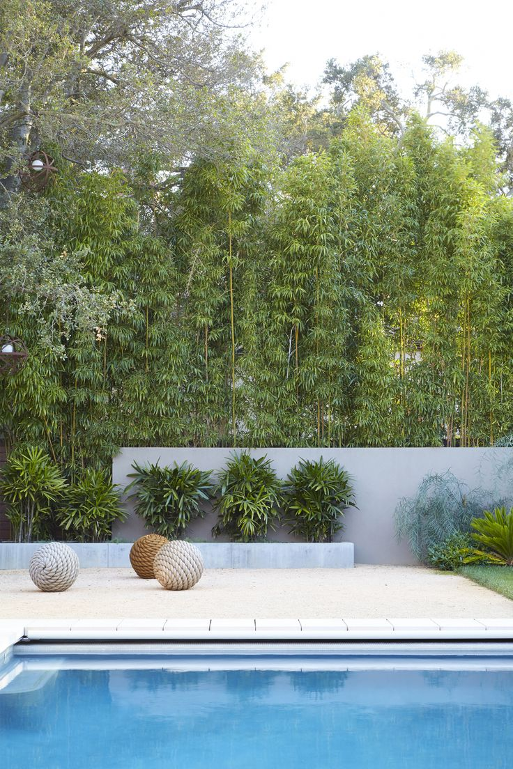 Jack merlo design more outdoor garden ideas landscape design gardening - Daniel Nolan Garden Design South Bay Garden Sfo
