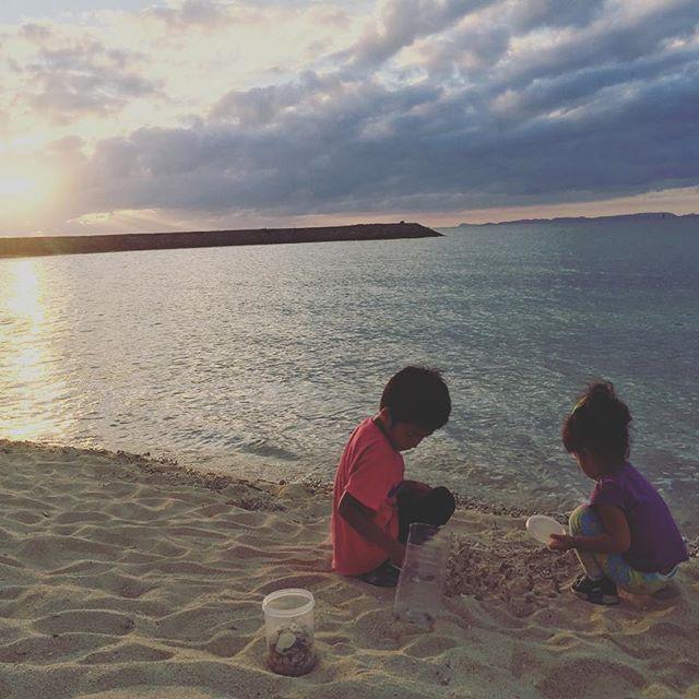 【mk4415】さんのInstagramをピンしています。 《朝行った海から 貝殻拾って 持って帰るー♡ して帰りの車の中で  よ〜〜く見たら ヤドカリさん…。T_T  ヤドカリさん… 海に返さなきゃ可哀想よね… て事でまた別の海。。 子供達  帰りたくない…って 夕方までおもいっきり 遊びました>_<笑  一緒になってあそんで 家で気づく。 ポケットに砂‼︎!!!笑。  #ヤドカリ #引っ越し #ごめんね😂  #兄妹#兄#妹#なかよし #2歳#5歳#貝殻#珊瑚 #海#空#夕日#夕陽#綺麗》