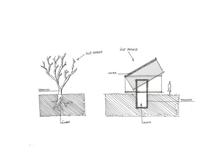 Casas en movimiento que aprovechan al máximo la luz solar