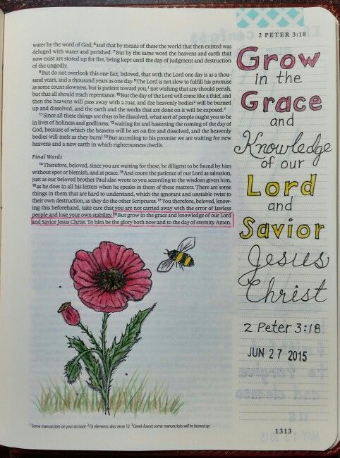 2 Peter 3:18 by Paula-Kay Bourland,  Stamp by Our Daily Bread Designs