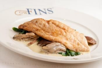 Sauteed black drum filet with spinach oysters shiitakes for Drum fish recipes