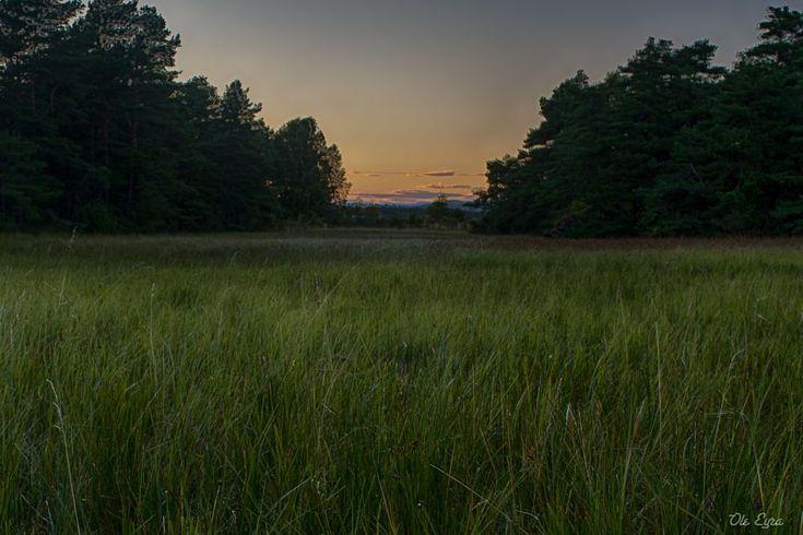 August Meditation II by Ole Morten Eyra