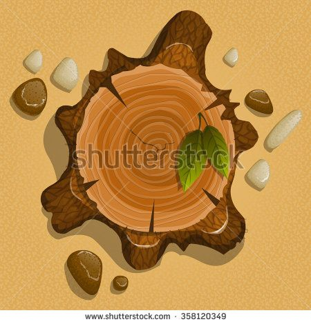 tree stump in the water with stones and leaves, view from above  #assets #game #vector #UI #cartoon #casual #awesome