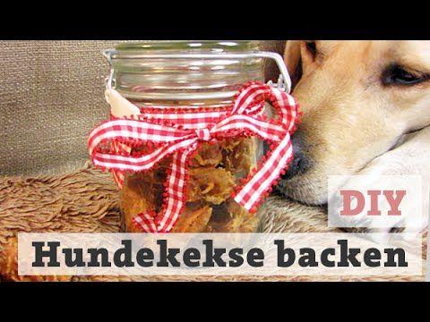 DIY Hundekekse Thunfisch selber backen – Leckerli für Hunde / Katzen machen Hundeleckerlies - YouTube