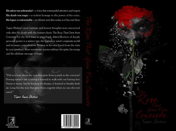 essay on the rose that grew from concrete The rose that grew from concrete (1999) is a collection of poetry written between 1989 and 1991 by tupac shakur, published by pocket books through its mtv books imprint.