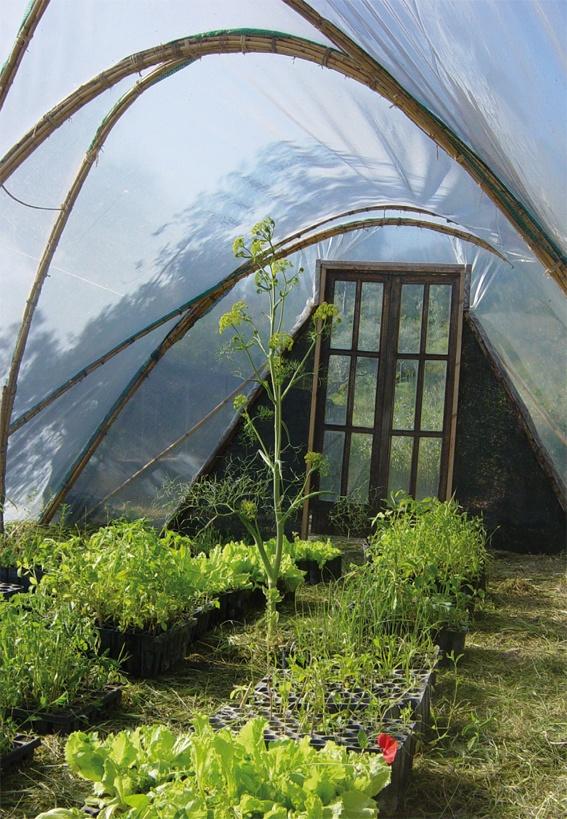 les 40 meilleures images du tableau les jardins de glanum sur pinterest le jardin fils et luberon. Black Bedroom Furniture Sets. Home Design Ideas