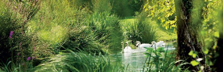 La finestra sul fiume Bisogno di una pausa in mezzo alla natura? Cosa ne dite di un soggiorno sulle rive del Mincio in un'antica dimora vicina a Verona ed al Lago di Garda?