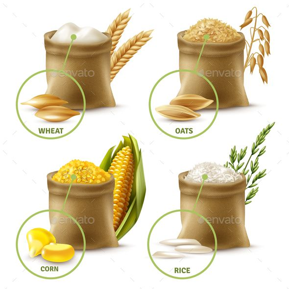 Agricultural Cereals - Wheat And Rice Isolated On White Background...  Royalty Free Cliparts, Vectors, And Stock Illustration. Image 101014391.