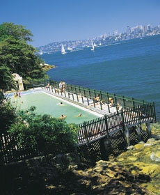 Our pool close to home in Sydney. McCallum Pool, Cremorne Point