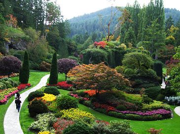 Beautiful Alice in Wonderland type of garden to inspire that pop