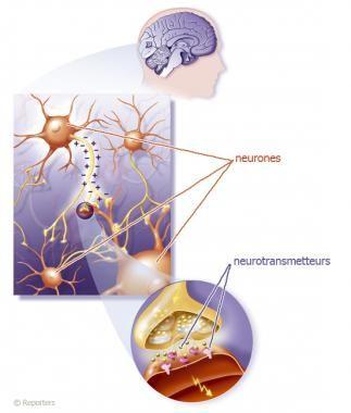 Le rôle des neurotransmetteurs dans le TDAH